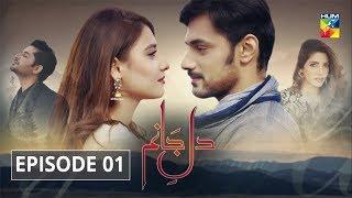 Dil e Jaanam Episode 1 HUM TV Drama