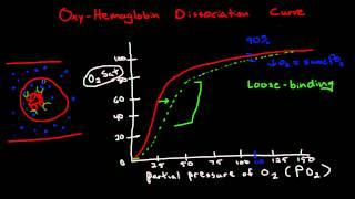 Oxygen Hemoglobin Dissociation Curve