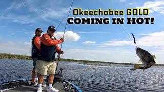 Team Martin Okeechobee GOLD! USA Bass Fishing Day 1