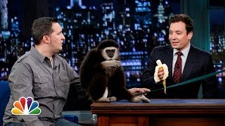 Jeff Musial: Otters, Gibbon and Water Buffalo, Part 1 (Late Night with Jimmy Fallon)