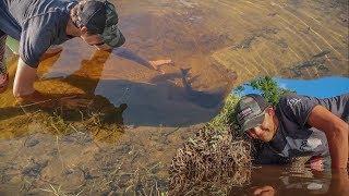 Hand Fishing DEEP Underground Holes for Catfish! (Clown Knife Pet Fish Reveal)