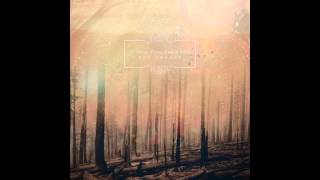 If These Trees Could Talk - They Speak With Knives