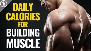 How Many Calories Does It Take To Build Muscle?