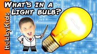 What's In A LIGHT BULB? HobbyScience Lab