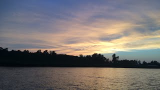 🔴LIVE! Catfishing at Night on Santee Cooper