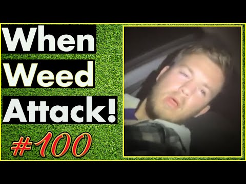 Smoking Weed / Weed Fail Compilation / WEED MEMES AND Weed Pranks! #100
