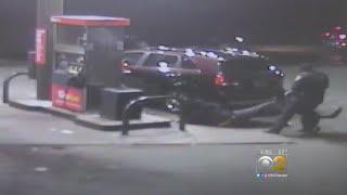 Indiana Police Dog Attacks Innocent Man