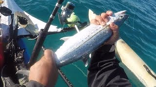 Trolling Big Baits (Cero and Bonito) Along The Reef