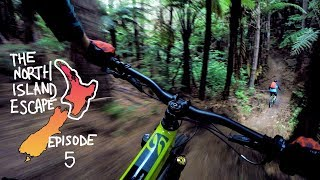 THIS is why I flew halfway around the world to mountain bike | North Island Escape Ep. 5