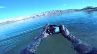 Found a sunken SeaDoo! Oakleys, Boat Motor, and lots of sunglasses