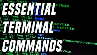 15 Useful Linux Commands Every Linux User Needs   Learning Terminal Part 1
