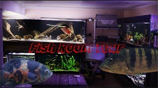 All types Of Fish In This Fishroom Tour!!!