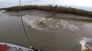 Insane, Nasty, & Best Fishing Ever...(feat. MDLR Fishing)