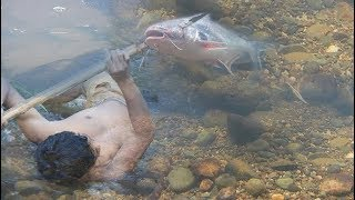 adventure in forest - Find Food delicious in the jungle -men angry with the pancreas - Eating FISH