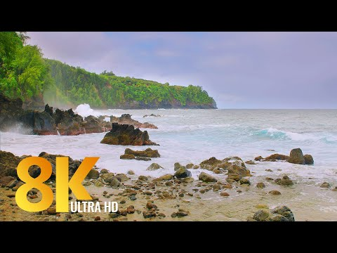 3 HRS Incredible Diversity of the Big Island, Hawaii - 8K Relaxation Video + Nature Sounds - Part#2
