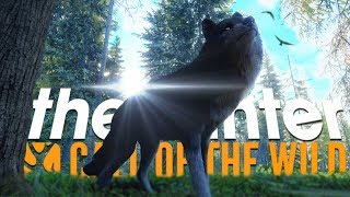 The Hunter Call Of The Wild | I MADE A FRIEND (NEW WEAPONS COMING)