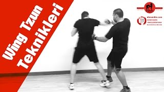 Wing Chun teknikleri tanıtım