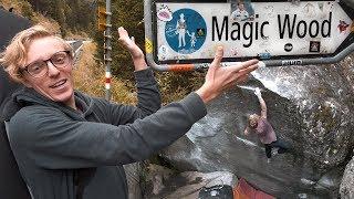Louis Cuts Loose In Magic Wood | Classic Climbs