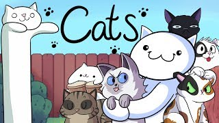 Our Cats :3