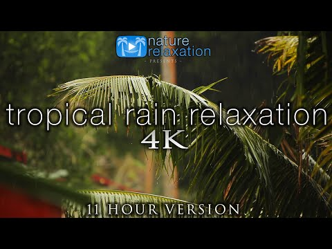 11 Hours of Tropical Rain Video + Sounds - Fiji Island Tropical Nature Relaxation