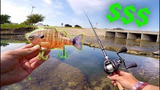 Why This Lure is WORTH $110 - City Pond Fishing with BIG Baits!