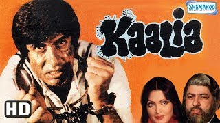 Download Amitabh Bachan Movies Clip Videos - WapZet Com