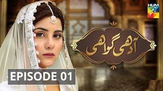 Adhi Gawahi Episode #01 HUM TV Drama