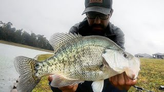 MONSTER CRAPPIE Fishing With LURES!!