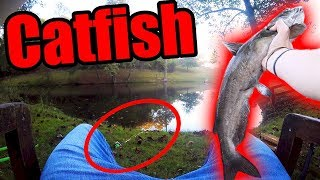 Catfish ALMOST Stole My $300 FISHING ROD!