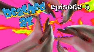 Beached Az: The Dolphins | Episode 5