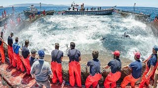 Everyone should watch this Fishermen's - Big Catch Hundreds Tons Fish With Modern Big Boat