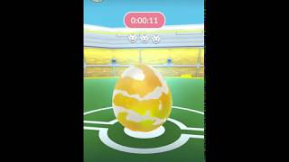 Raid Egg Hatching