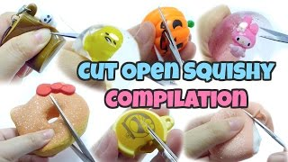 Cut Open Squishy Compilation 1