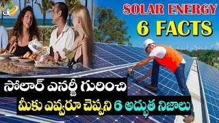 6 Surprising Facts About Solar Energy | Planet Leaf