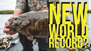 World Record Smallmouth Bass IGFA Pending
