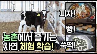 [생생투데이-창원] 오감만족, 농촌에서 즐기는 봄! (2019.04.19,금)