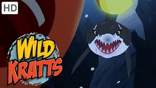 Wild Kratts 🦈 Sharks on the Hunt (Part 1/2) 🌊 Shark Week | Kids