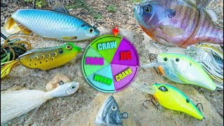 ROULLETE FISHING LURE CHALLENGE (WHO WILL WIN??)