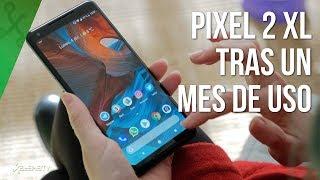 Pixel 2 XL: la CÁMARA que me ENAMORÓ y la pantalla que rompió el corazón