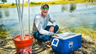 Relocating Fish for the Big Bass Factory Pond!