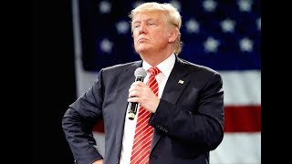 Trump's Totally Not Guilty Twitter Meltdown