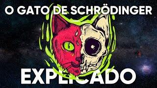 O Gato de Schrödinger Explicado
