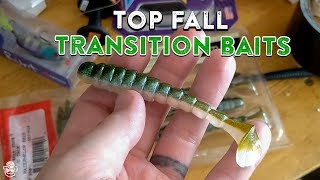 Best Bass Fishing Lures For The Fall Transition Period