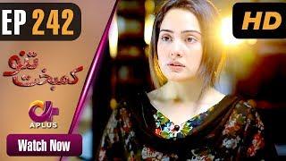 Drama | Kambakht Tanno - Episode 242 | Aplus ᴴᴰ Dramas | Tanvir Jamal, Sadaf Ashaan