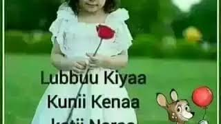 Download Sirba Afaan Oromoo Clip Videos - WapZet Com