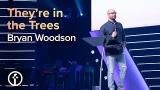They're in the Trees | Pastor Bryan Woodson