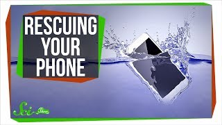 What's the Best Way to Rescue a Drowned Phone?