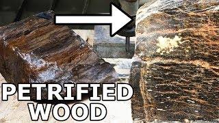 Petrified Wood Cut in Half with a 60,000 PSI Waterjet