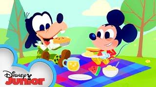 Mickey Mouse Nursery Rhymes Part 2 | 🎶 Disney Junior Music Nursery Rhymes | Disney Junior