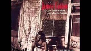 James Cotton blues in my sleep